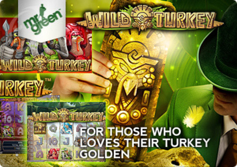 Wild Turkey Slots Bonus Game